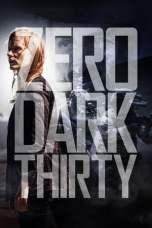 Zero Dark Thirty (2012) BluRay 480p & 720p Free HD Movie Download