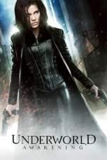 Underworld Awakening (2012) BluRay 480p & 720p Free HD Download