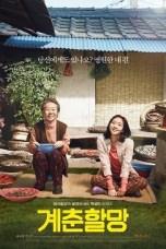 Canola (2016) BluRay 480p & 720p Korean HD Movie Download
