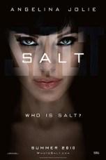 Salt (2010) BluRay 480p & 720p Free HD Movie Download English Sub