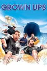 Grown Ups (2010) BluRay 480p & 720p Free HD Movie Download