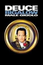 Deuce Bigalow: Male Gigolo (1999) WEB-DL 480p 720p Movie Download