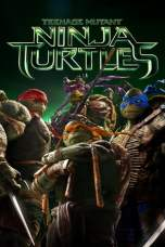 Teenage Mutant Ninja Turtles (2014) BluRay 480p & 720p Movie Download