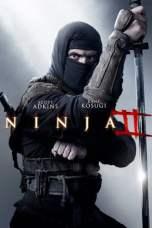 Ninja: Shadow of a Tear (2013) BluRay 480p & 720p Movie Download