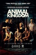 Animal Kingdom (2010) BluRay 480p & 720p Free HD Movie Download