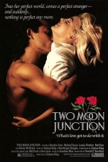 Two Moon Junction (1988) BluRay 480p & 720p Free HD Movie Download