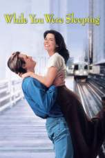 While You Were Sleeping (1995) BluRay 480p & 720p Movie Download