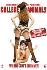 Dorm Daze (2003) BluRay 480p, 720p & 1080p Mkvking - Mkvking.com
