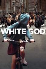 White God (2014) BluRay 480p & 720p Free HD Movie Download