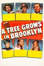 A Tree Grows in Brooklyn (1945) BluRay 480p | 720p | 1080p Movie Download