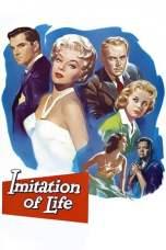 Imitation of Life (1959) BluRay 480p, 720p & 1080p Movie Download