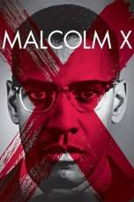 Malcolm X (1992) BluRay 480p, 720p & 1080p Mkvking - Mkvking.com