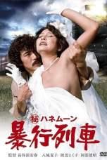 Secret Honeymoon: Rape Train (1977) WEBRip 480p, 720p & 1080p Movie Download