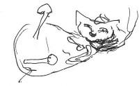 huggy-cat
