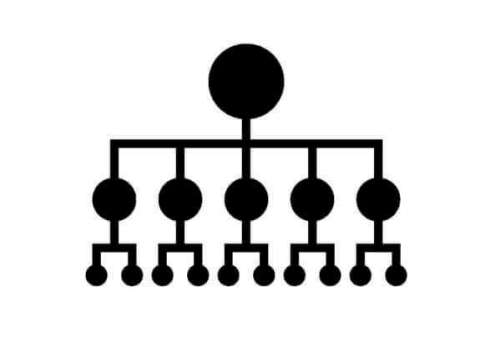 ラーメン 種類 系統 意味
