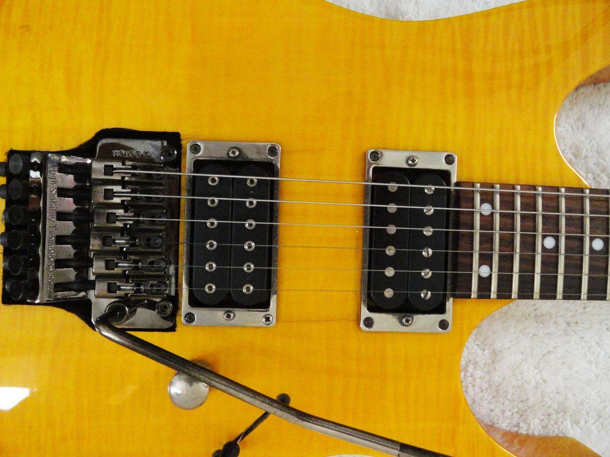ibanez rg 770 wiring diagram dichotomous key ex series serial