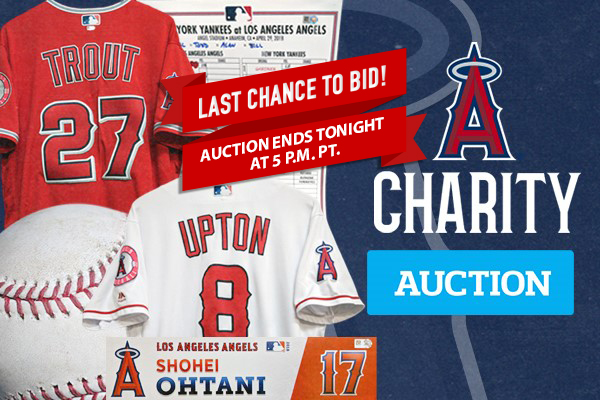 separation shoes e543b 13101 Last Chance to Bid: Angels Charity Auction   Say Hello To ...