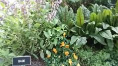 ATTPark_Garden 4