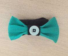 Bleu-vert-pournoir_ferme