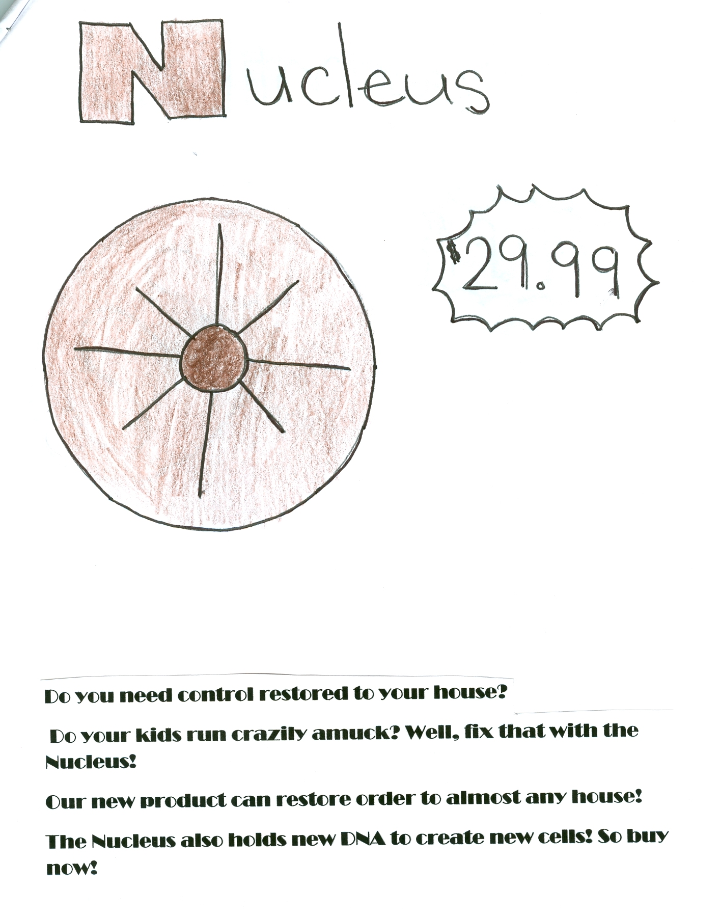 Cell Catalog Ms Lesueur S Science Blog