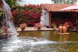 Hacienda garden