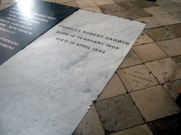 Westminster-Abbey-Darwins-grave