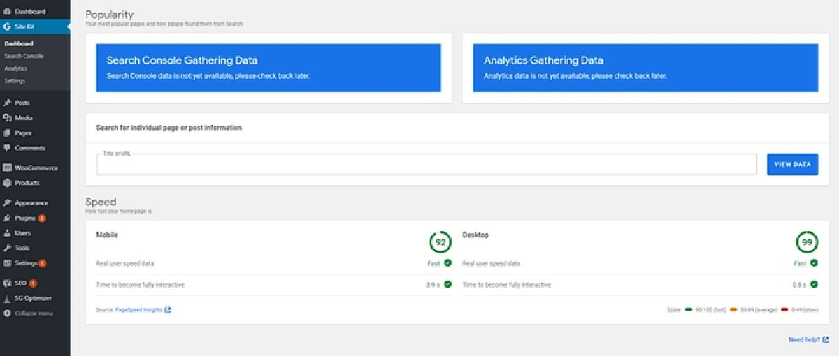 PageSpeed Insights results.
