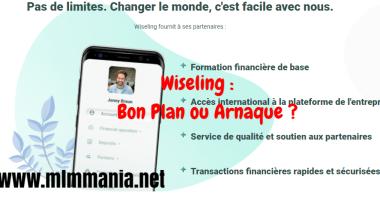 wiseling-avis-français