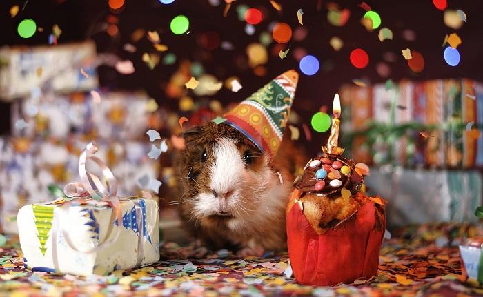 Prezenty urodzinowe w pracy – co wypada kupić koledze, a co szefowi?