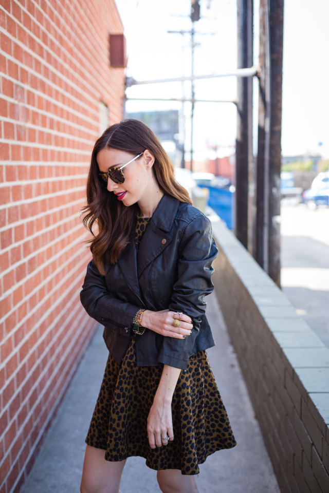 animal print dress from loft with leather moto jacket on M Loves M @marmar