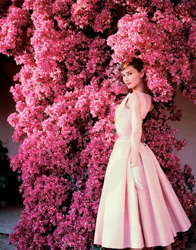 audrey hepburn in front of pink bougainvillea