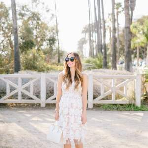 embroidered fit and flare dress