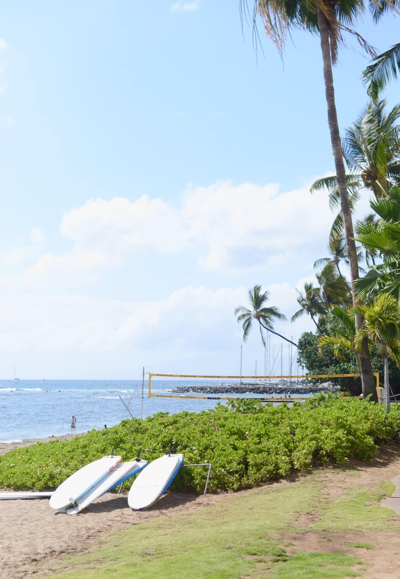 gorgeous Lahaina Beach