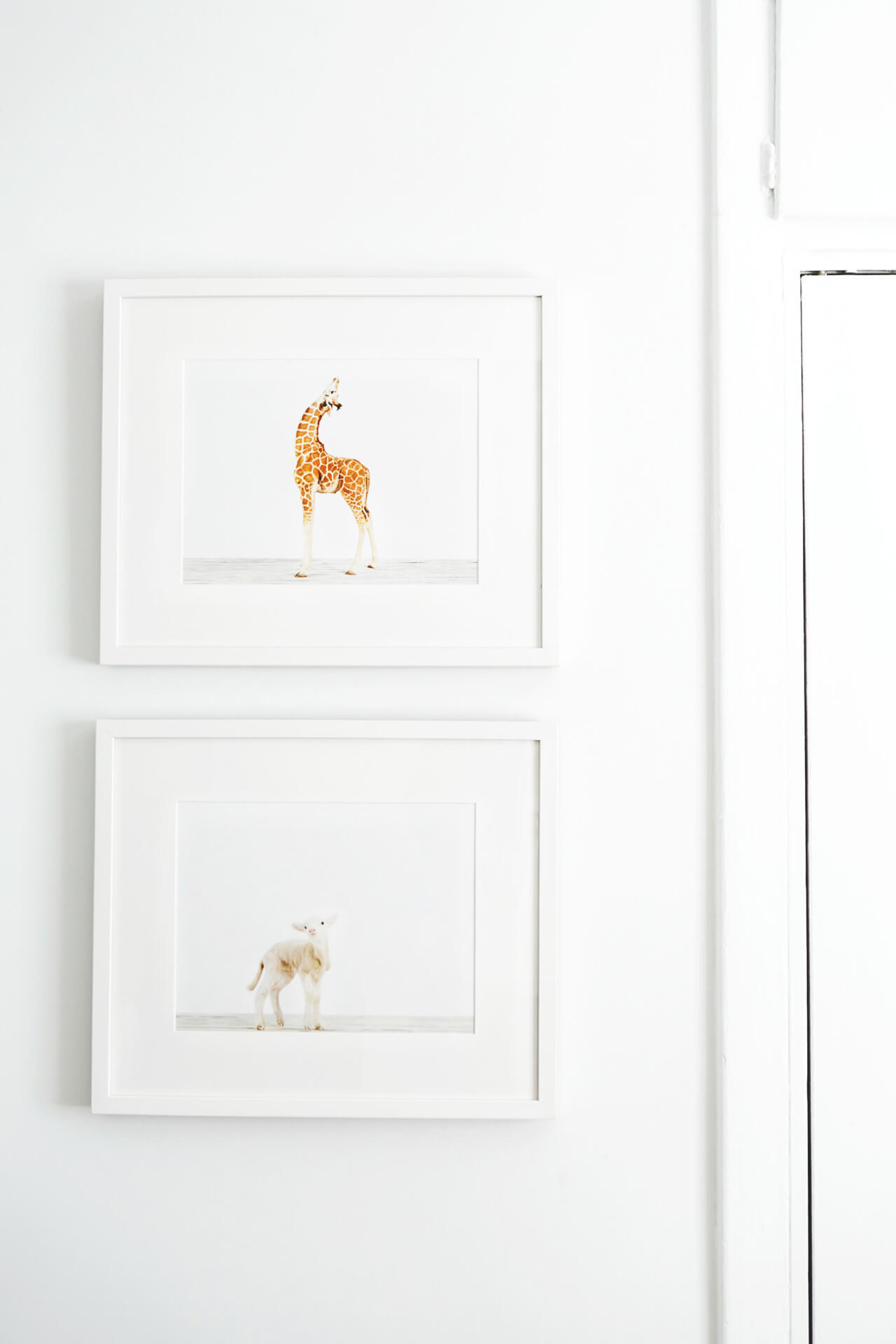 animal print shop prints in nursery