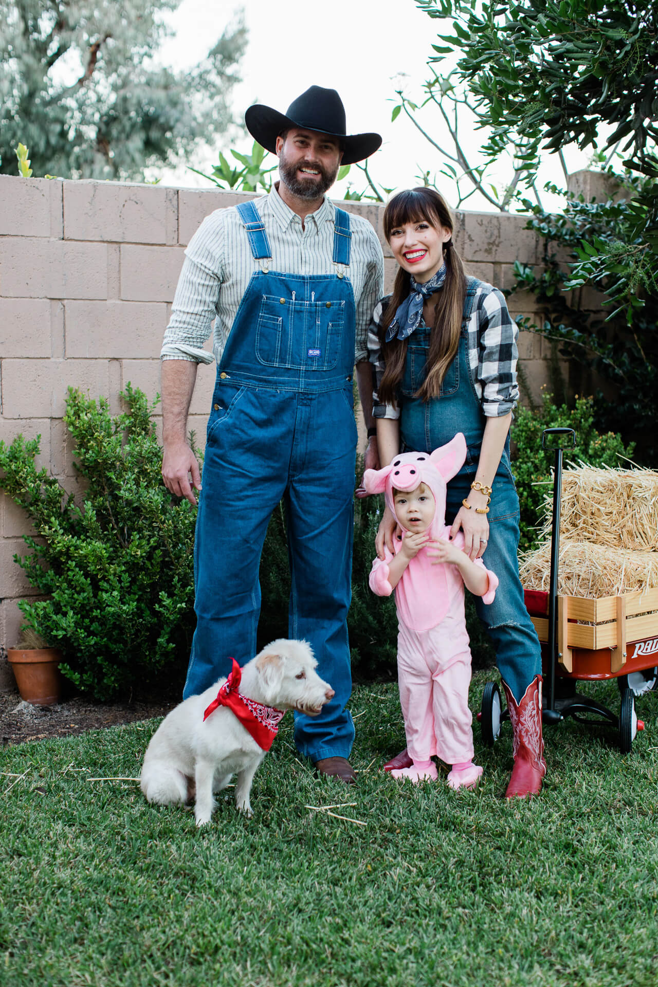 8b0a3aaf6d Our Three Person Family Halloween Costume | M Loves M | Bloglovin'
