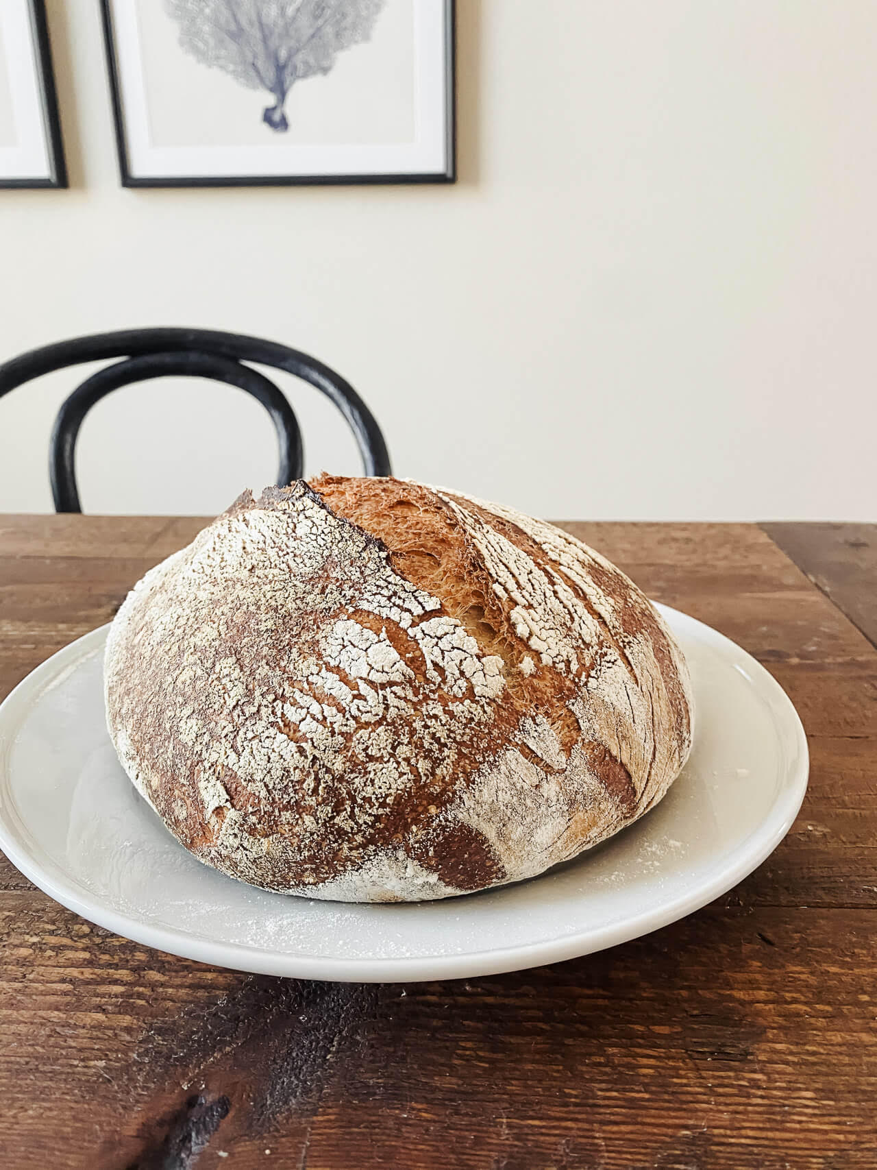 Here's how to get started baking sourdough bread! - M Loves M @marmar