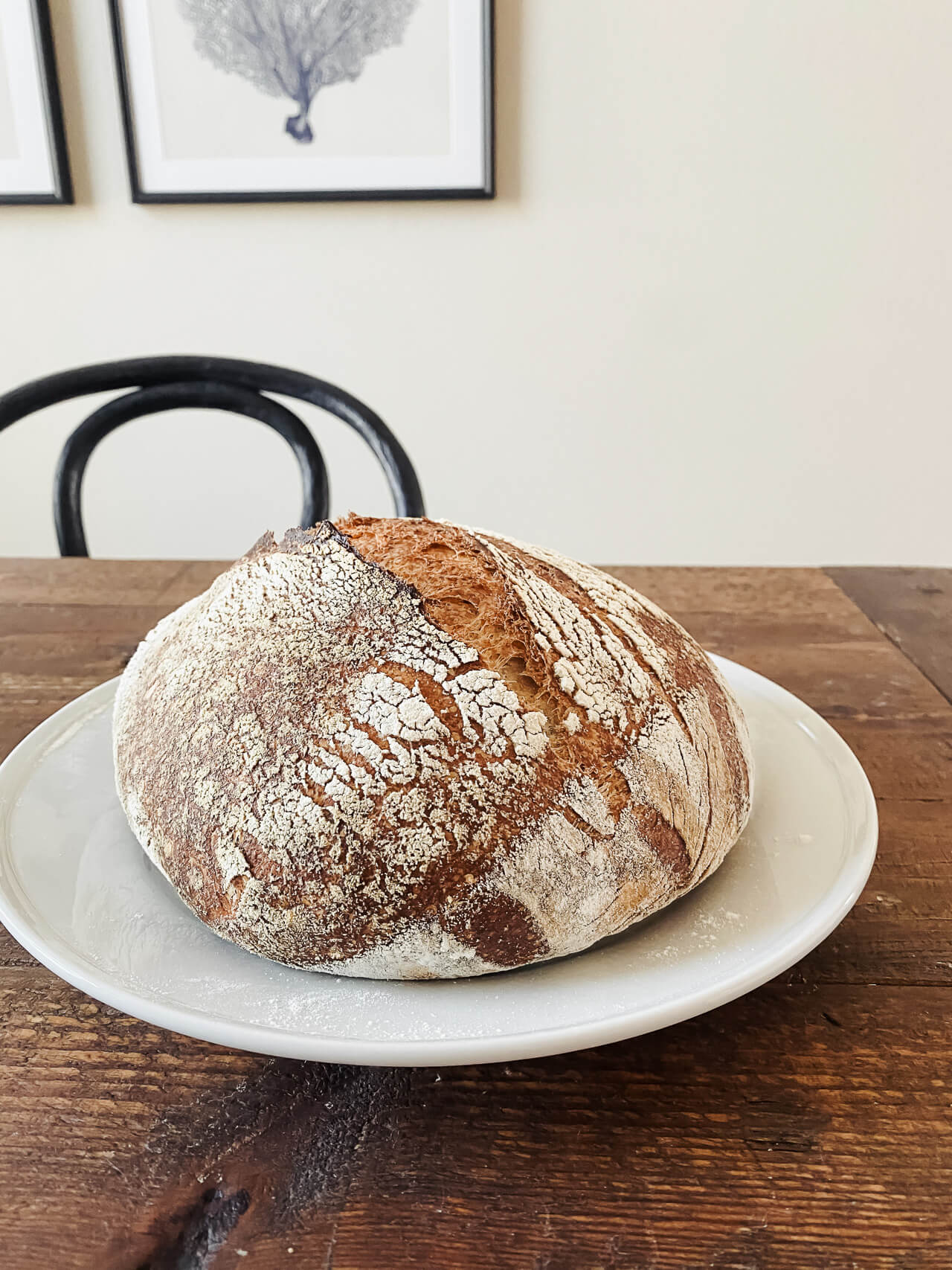 This spring we've been making sourdough bread starter, baking and cooking up a storm, adjusting to working from home with kids, and enjoying lots of family time! Plus shopping the online sales of course! - M Loves M @marmar