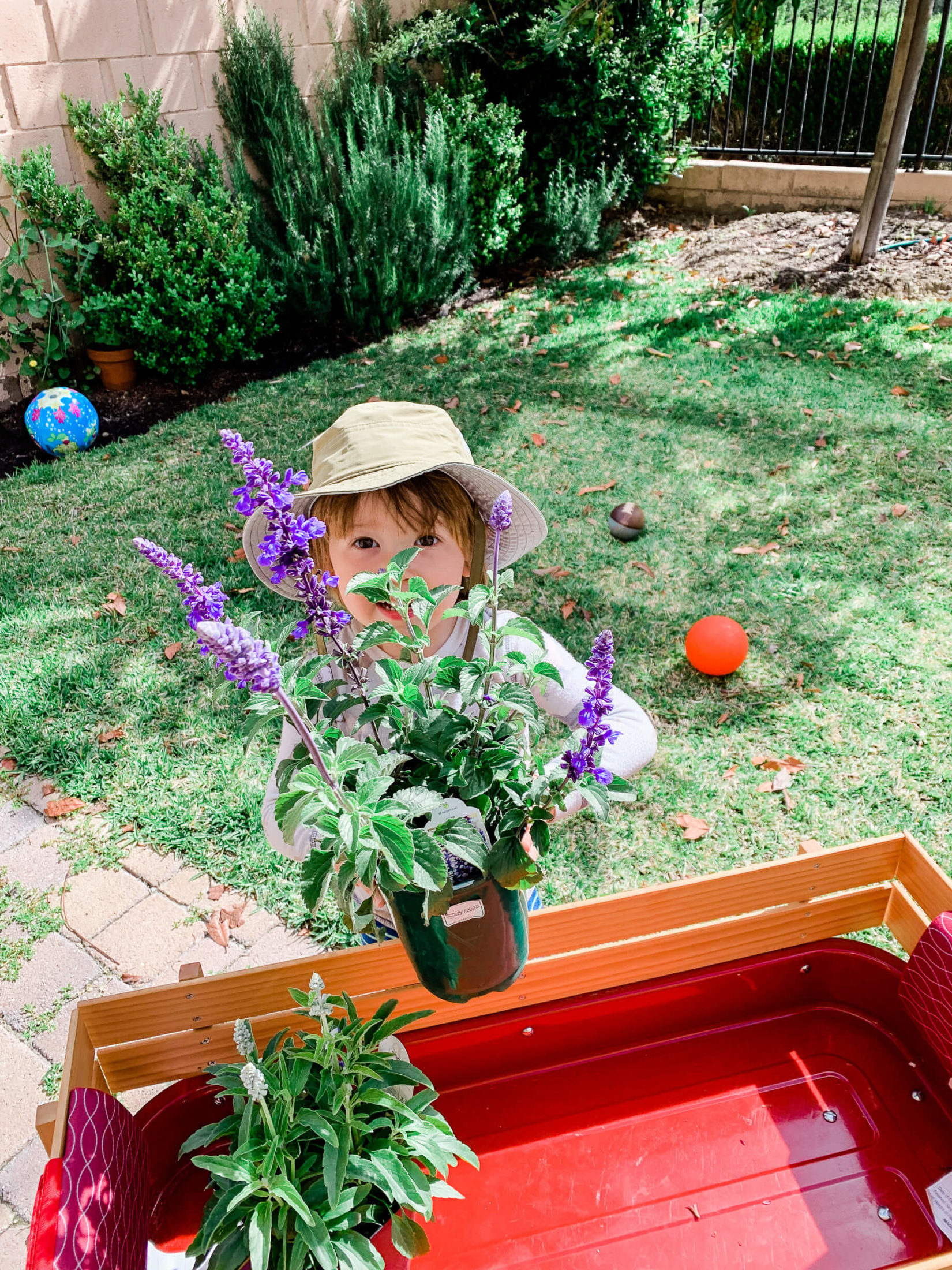 How to start an at home garden! - M Loves M @marmar