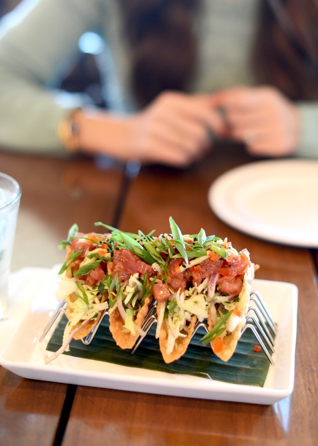 ahi tuna tacos at Tommy Bahama Bar and Grill by M Loves M