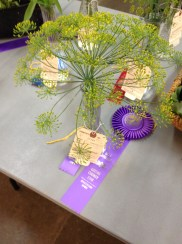 Purple for our dill, and the added distinction of best herb!