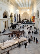 A day at the museum.