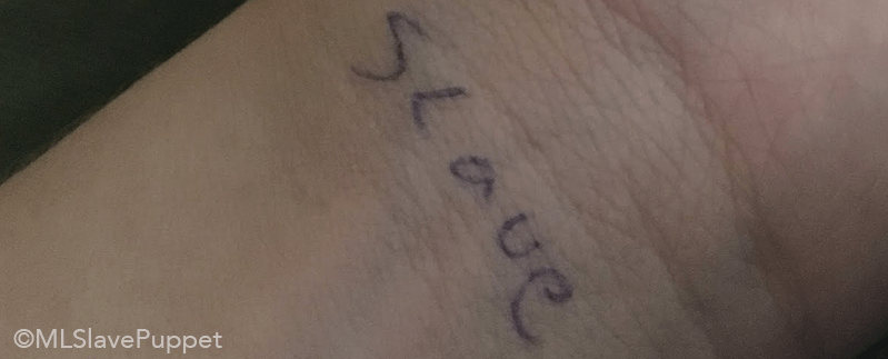 Task: Write 'slave' on both my wrists