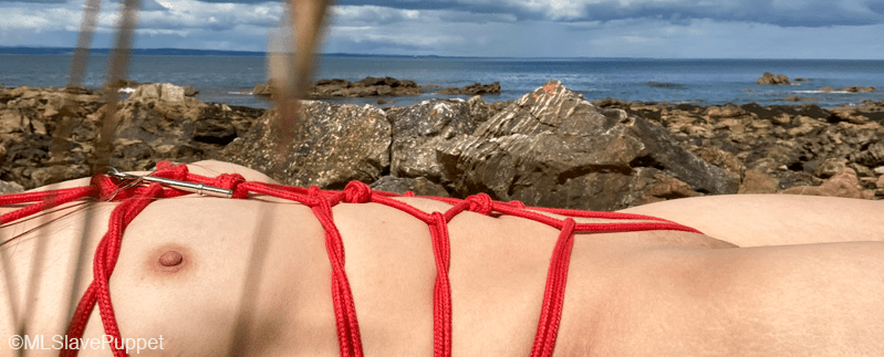 Task 24: Outdoor Rope Harness