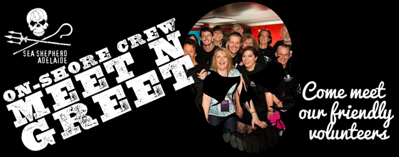 sea shepherd adelaide onshore crew meet and greet