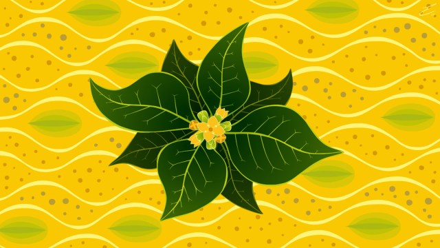 A stylised rendition of mangrove leaves as fruits floats upon a yellow background suggestive of the forms of pneumatophores, gentle waves and mangrove fruits