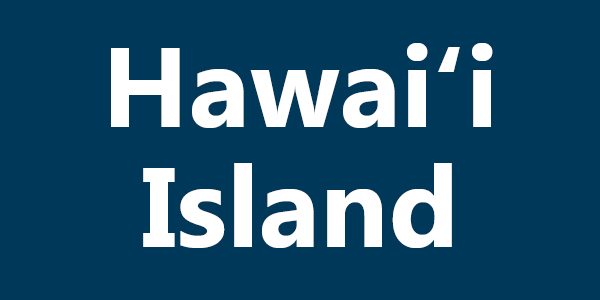 Pay Registration Online Hawaii