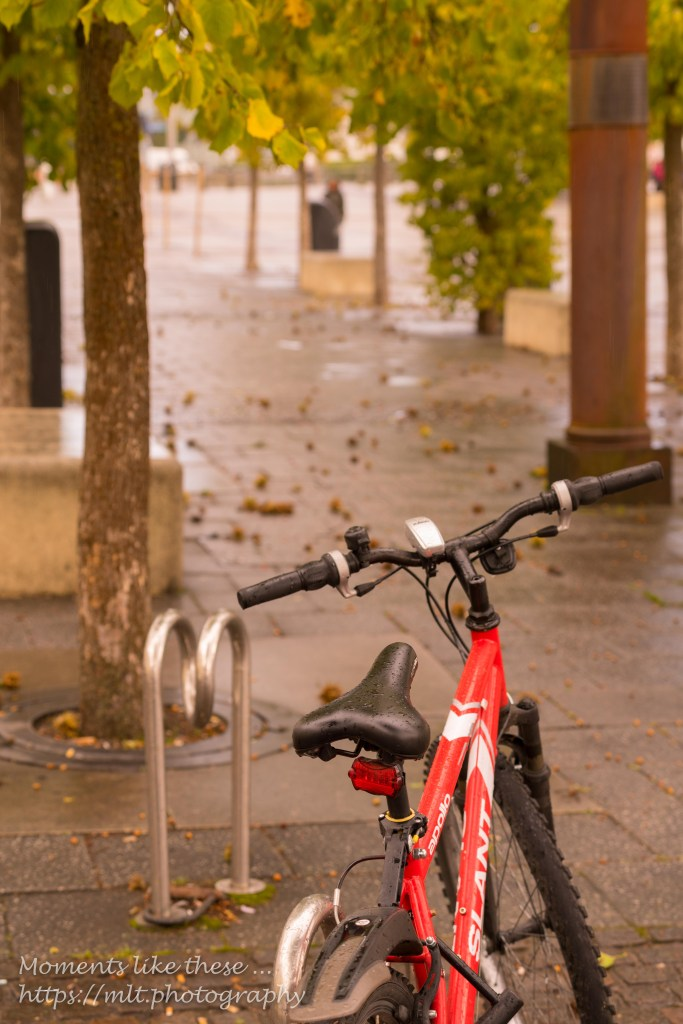 Bike by the Bay