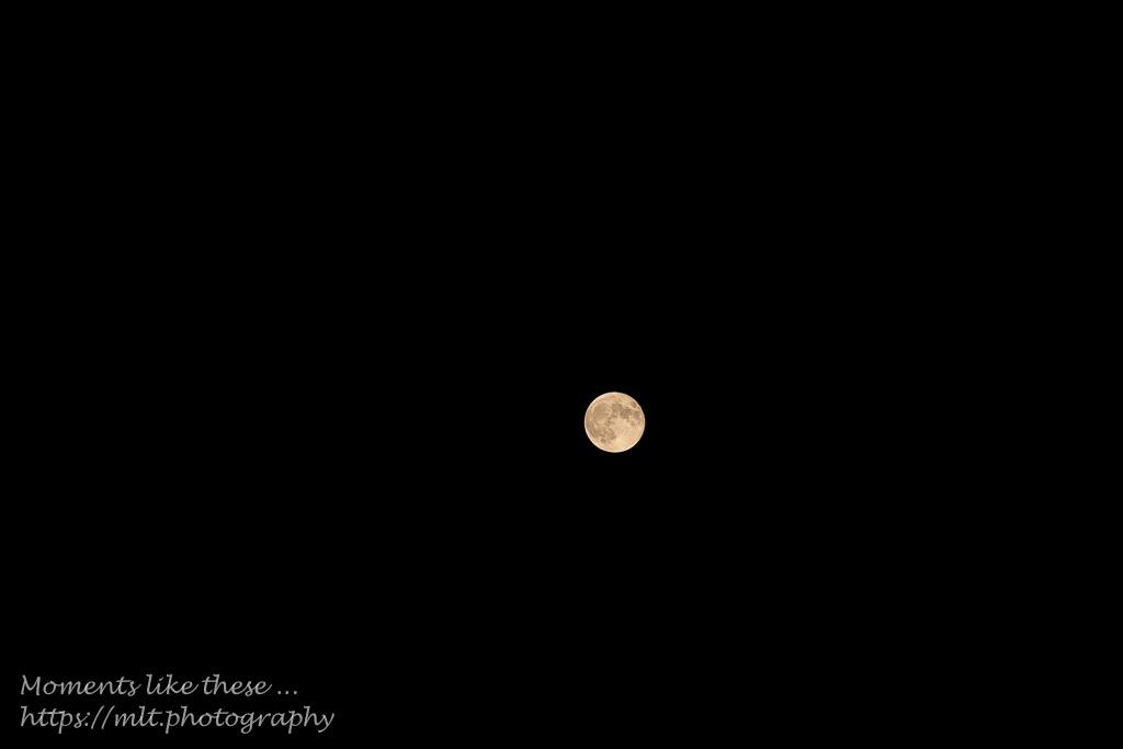 Super Moon in B&W