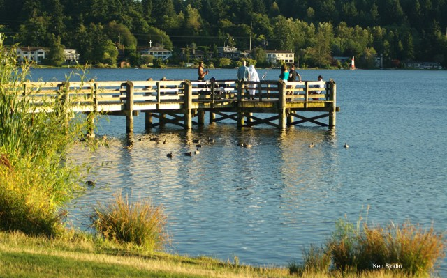 From Ken Sjodin, Lake Ballinger's fishing pier was a popular place Saturday.