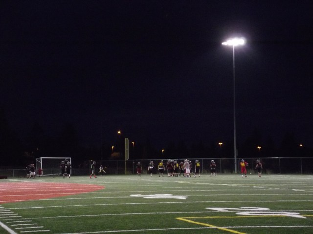 The football / baseball field at Mountlake Terrace High School will receive a new playing surface if the district's February, 2014 bond issue passes